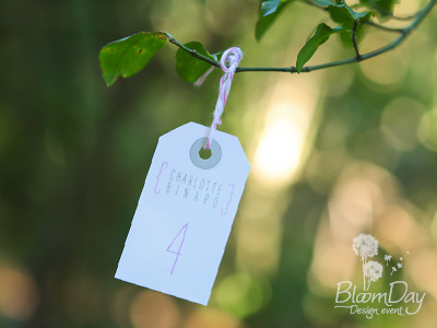 Escort cards de Ludovic & Cindy